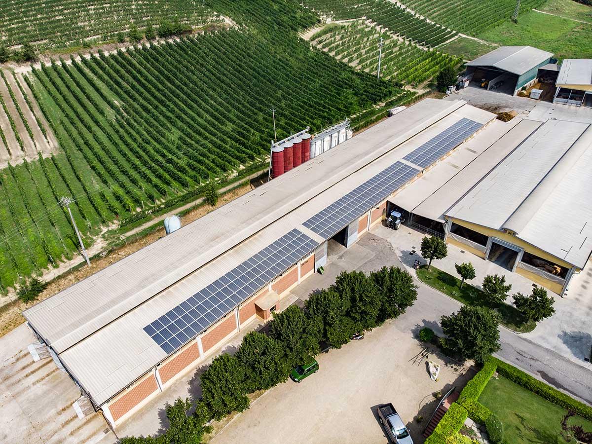 Azienda Agricola Pavesio